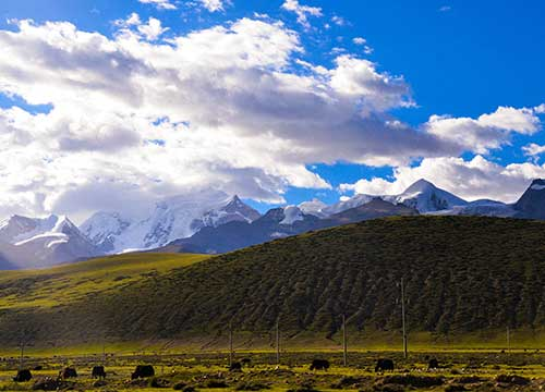 8 Days Lhasa to Namtso Lake Biking Tour